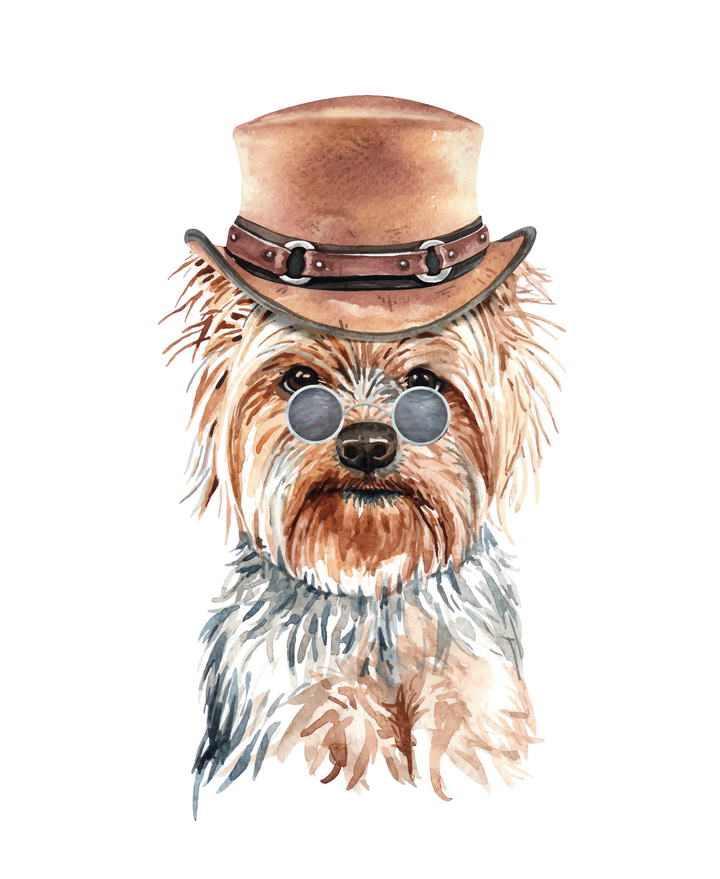 彩色手绘油画风格戴帽子的西施犬宠物狗图片免抠素材