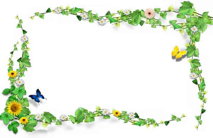 向日葵和绿色的藤蔓组成的文本框边框图片免抠素材