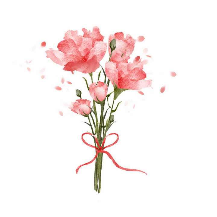 彩色水彩画风格一束康乃馨花朵花卉图片免抠素材