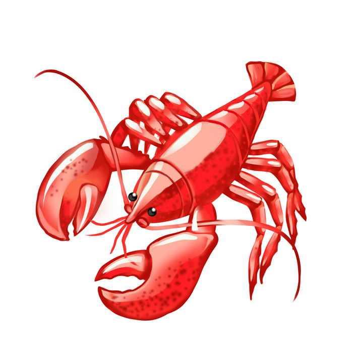 手绘风格红色的龙虾美食图片免抠素材