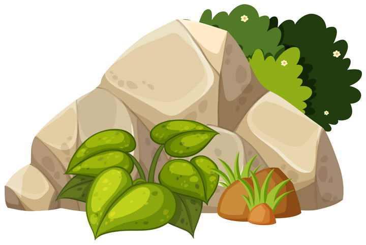 一个石头堆和灌木丛图片免抠素材
