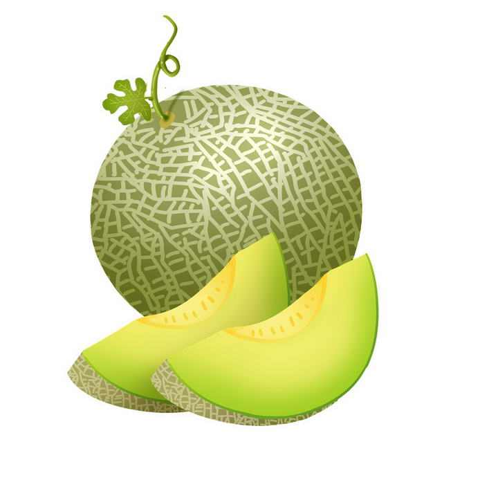 手绘风格切开的哈密瓜水果图片免抠素材