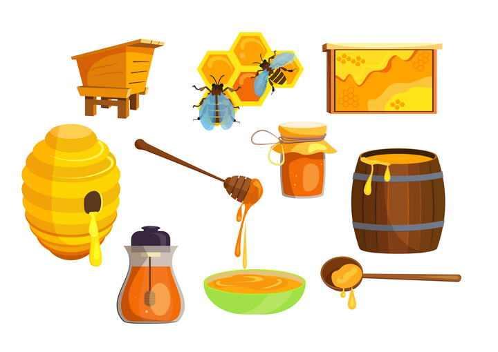 各种蜂蜜养蜂图片免扣素材