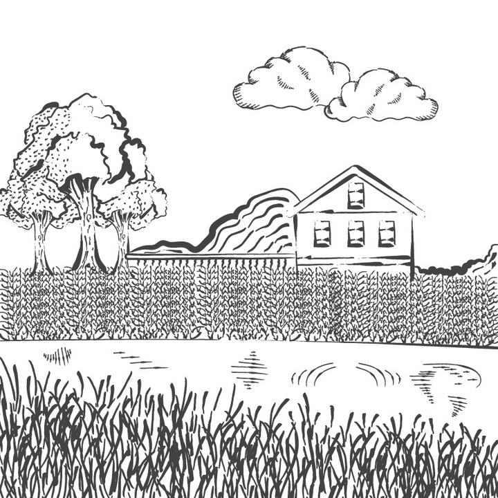 黑色线条农场农村农田风景照简笔画图片免抠素材