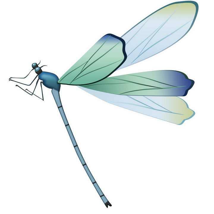 手绘风格蜻蜓昆虫图片免抠素材