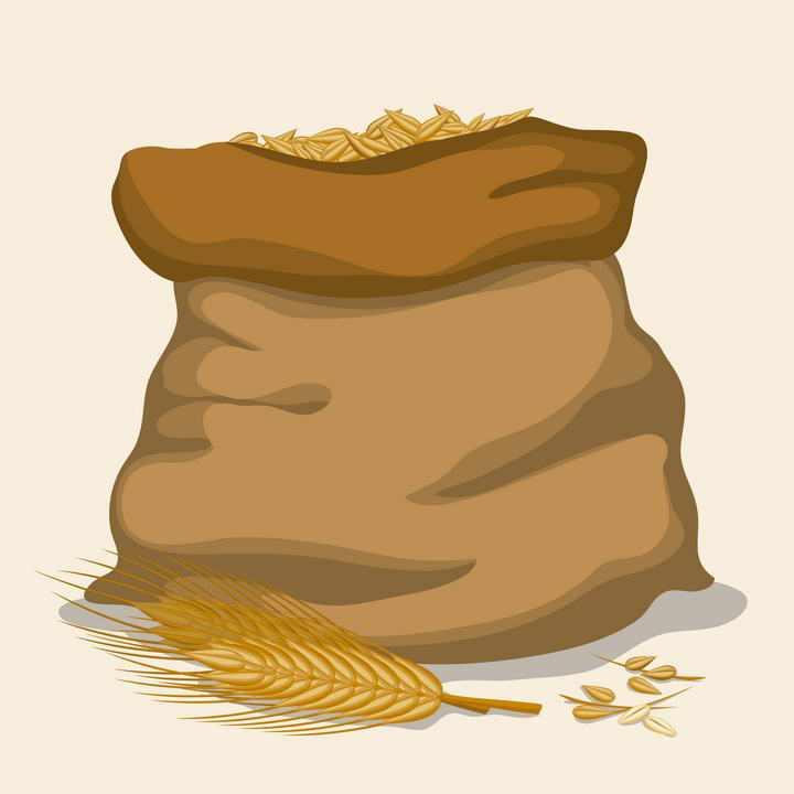 一麻袋小麦麦粒和麦穗免抠矢量图片素材