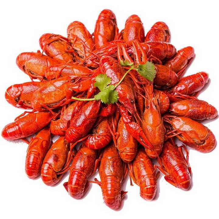 摆放整齐的麻辣小龙虾美味河鲜美食图片免抠素材