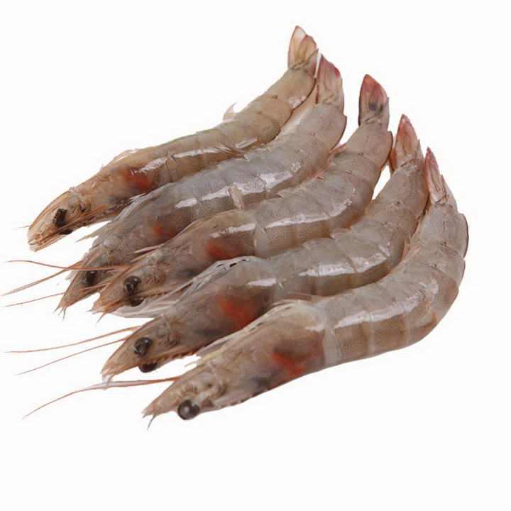 摆放整齐的新鲜河虾对虾美食河鲜图片免抠素材