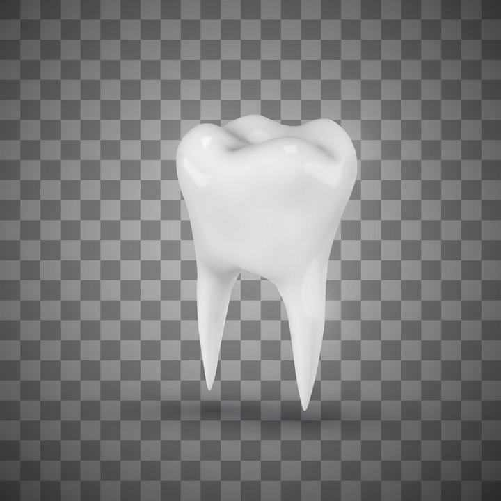 一颗白色的立体牙齿人体器官图片免抠素材