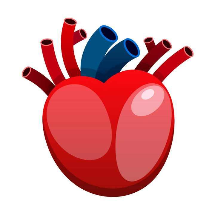 卡通风格人体器官组织心脏免扣图片素材