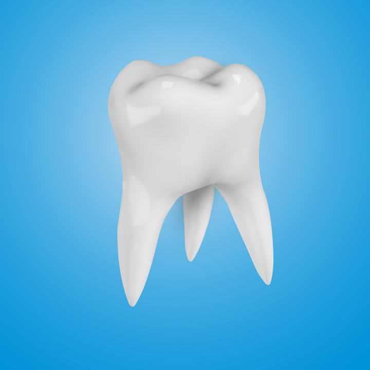 一颗白色的立体牙齿人体组织器官图片免抠素材