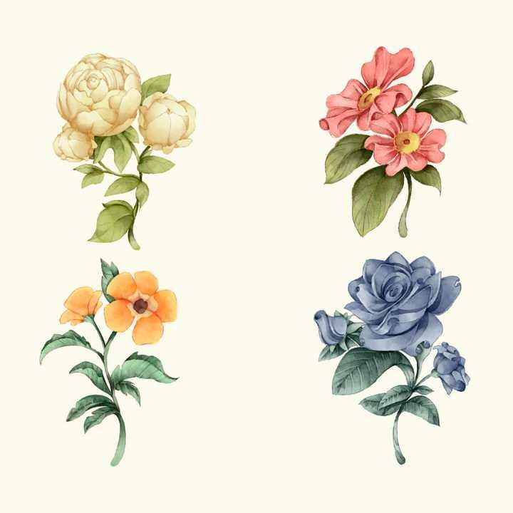 4种不同品种的花卉花朵鲜花图片免抠矢量图