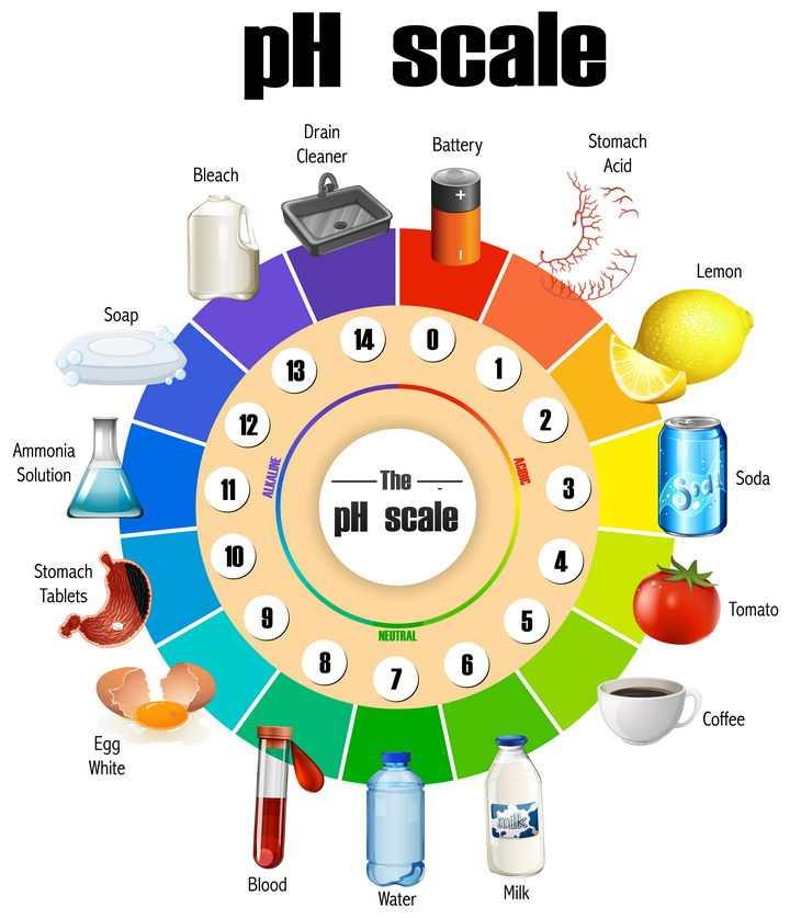 常用生活物质中酸碱度PH值统计图中学化学教学图片免抠素材