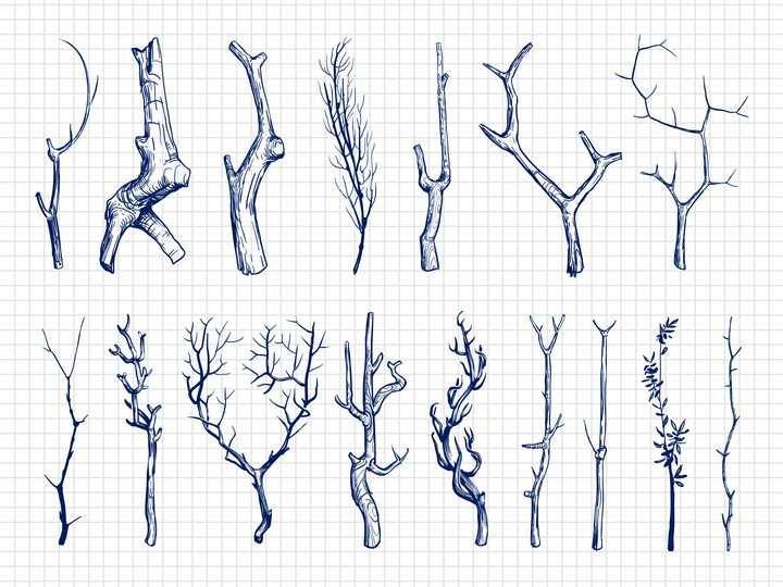 各种圆珠笔手绘风格树枝枯枝图片免抠素材