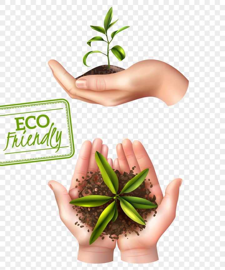 双手捧着的泥土小树苗环境保护主题图片免抠素材