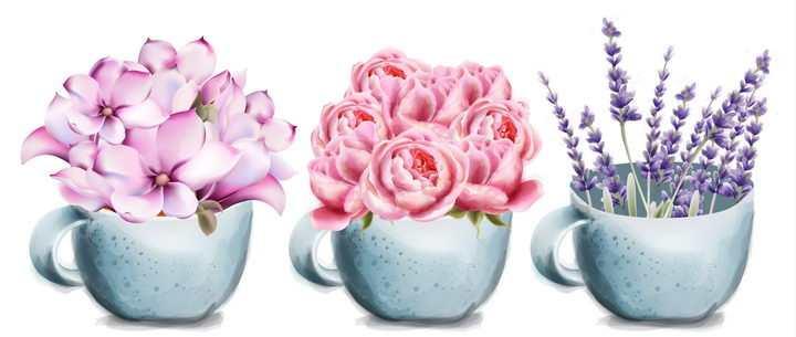 3款漂亮的茶杯中的花朵花卉鲜花免抠图片素材
