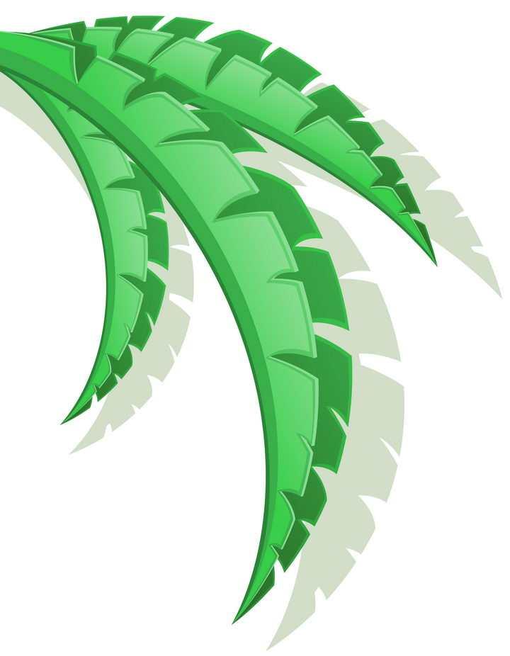 芭蕉树叶子装饰树叶免抠矢量图片素材