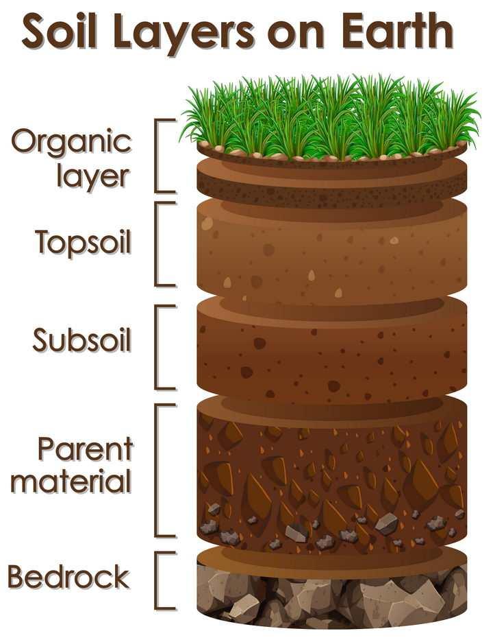 土壤分层结构示意图中学地理教学图片免抠素材