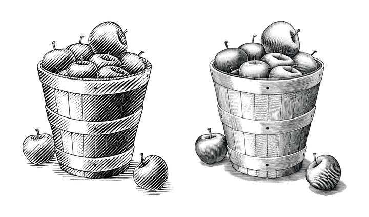 一桶苹果黑色素描图片免抠素材