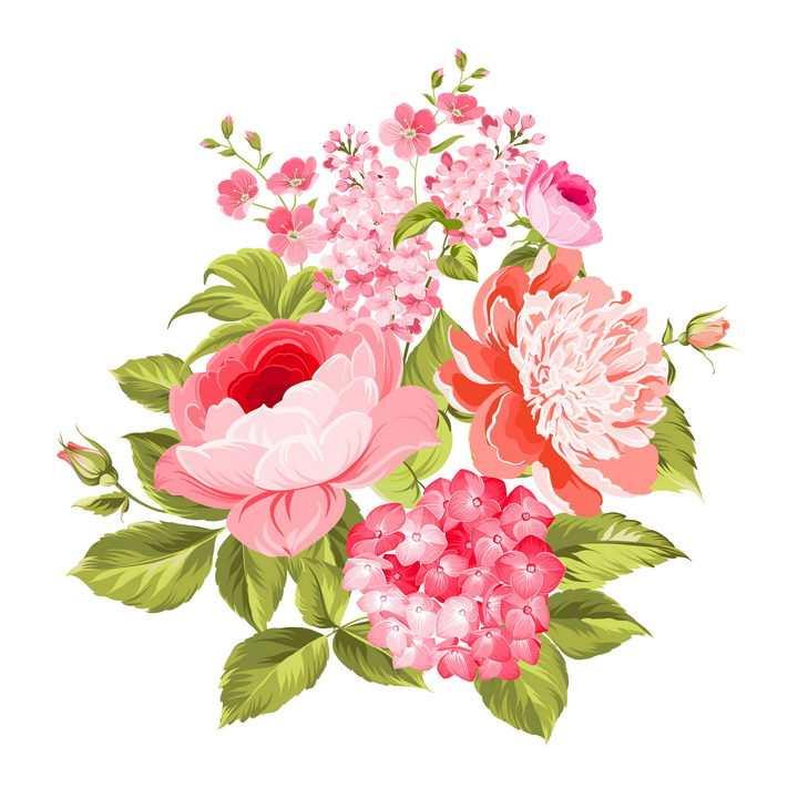 各种各样鲜艳的红色和粉色花朵花卉鲜花免抠图片素材
