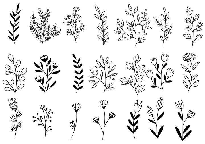 21款树叶画图片大全手绘线条叶子简笔画图片免抠素材