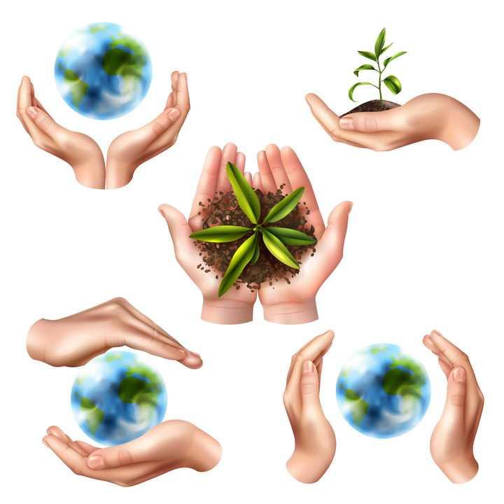双手捧着的地球和小树苗绿色环保主题图片免抠素材