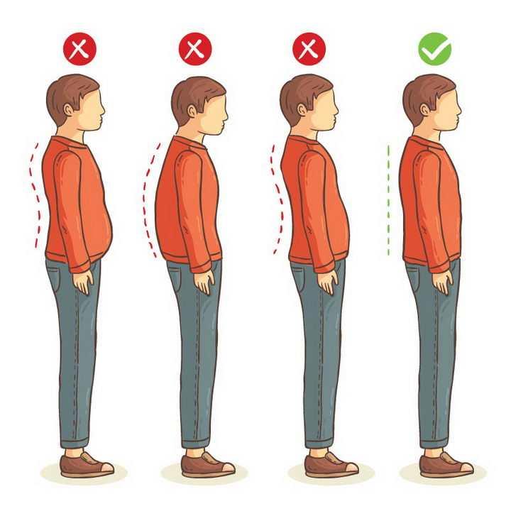 3种驼背错误站姿和正确站立姿势对比图图片免抠素材