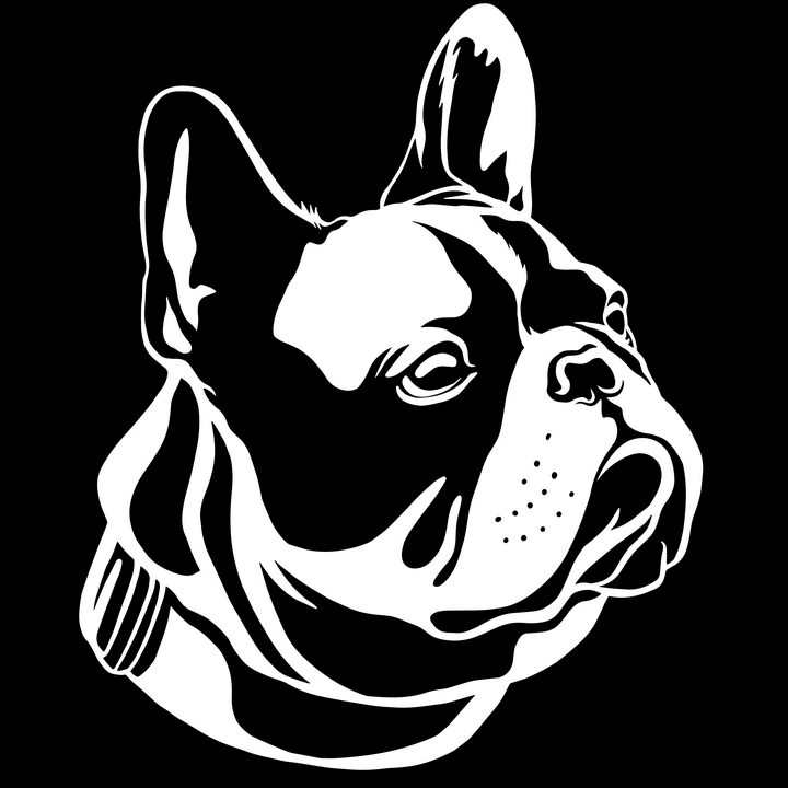 黑白画风格宠物狗狗品种法国斗牛犬图片免抠素材