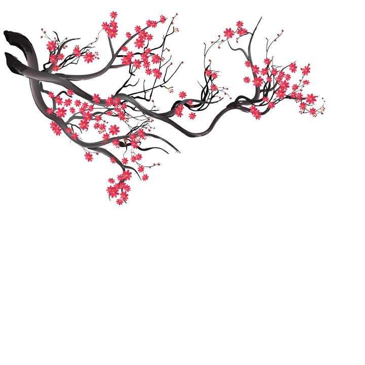 枝头上的红色梅花装饰图片免抠矢量素材