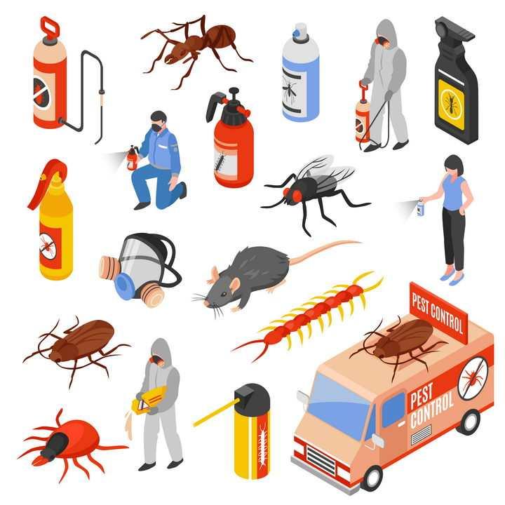 2.5D风格杀虫消灭害虫蚂蚁苍蝇蟑螂老鼠等图片免抠矢量素材
