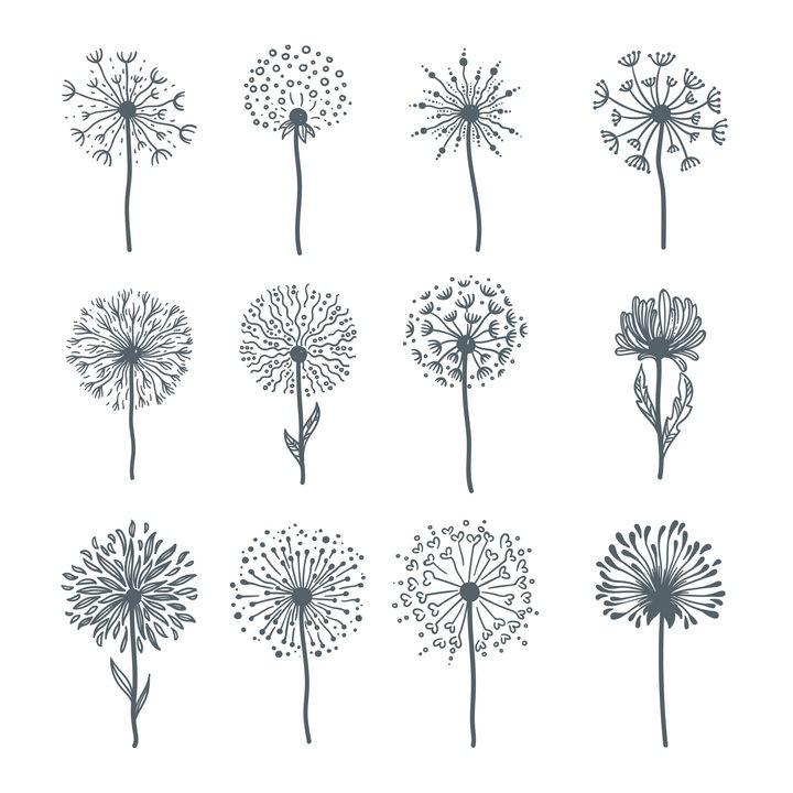 12款手绘风格蒲公英菊花花朵图片免抠矢量素材 生物自然-第1张