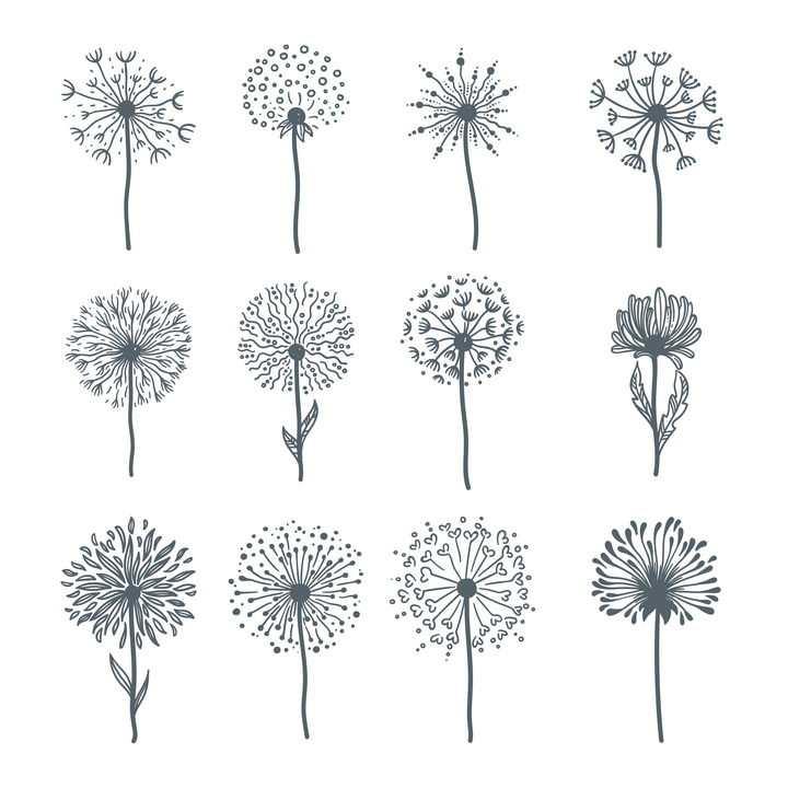 12款手绘风格蒲公英菊花花朵图片免抠矢量素材