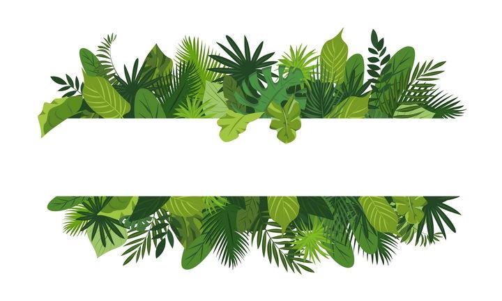 绿色树叶组成的上下两部分文本框标题框图片免抠素材 装饰素材-第1张