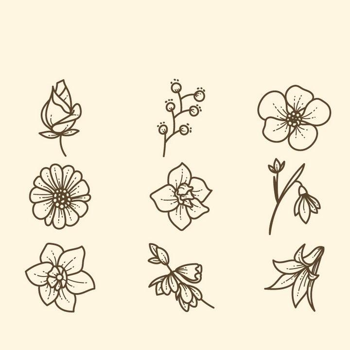 线条素描风格各种花朵花卉桃花梅花菊花等图片免抠矢量素材 生物自然-第1张
