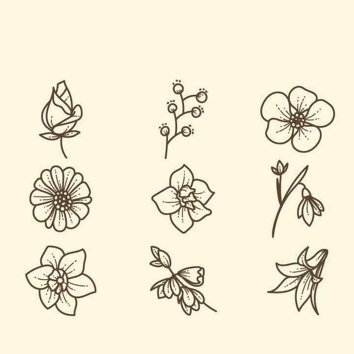 线条素描风格各种花朵花卉桃花梅花菊花等图片免抠矢量素材
