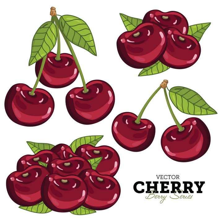 手绘红色樱桃车厘子美味水果图片免抠矢量素材