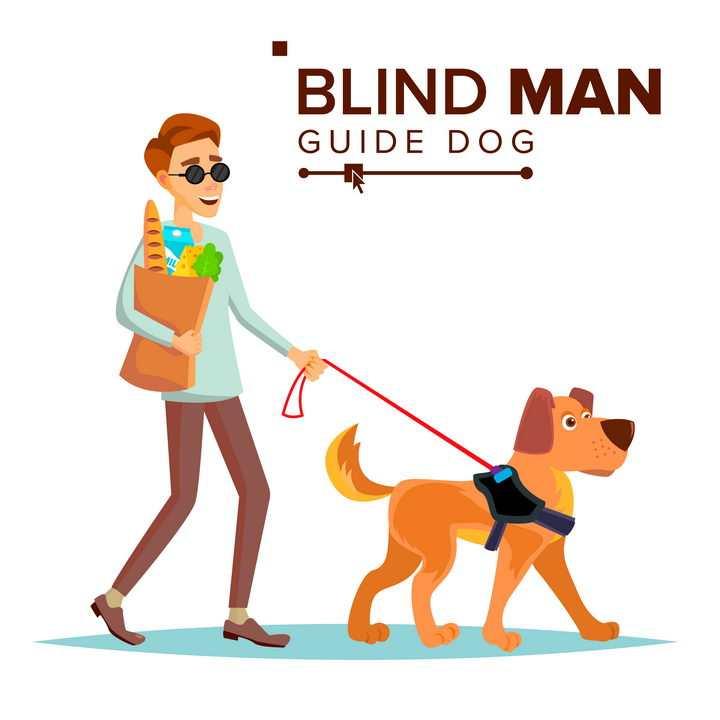 卡通下班遛狗的盲人年轻人导盲犬图片免抠矢量素材