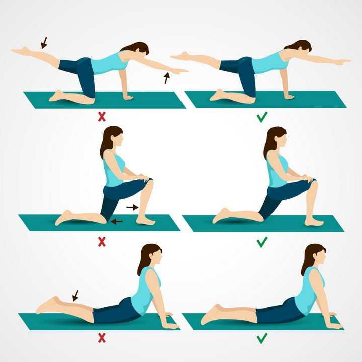 瑜伽拉伸动作正确和错误姿势示范图片免抠素材