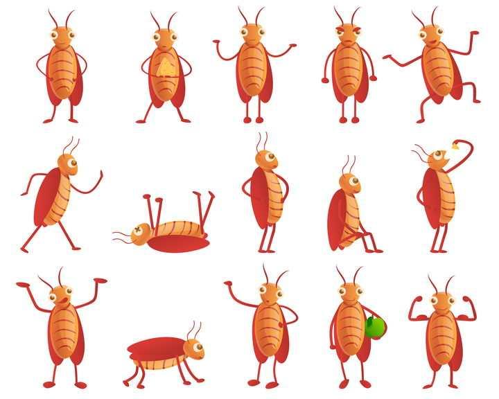 15款不同造型的卡通蟑螂害虫灭虫图片免抠矢量素材