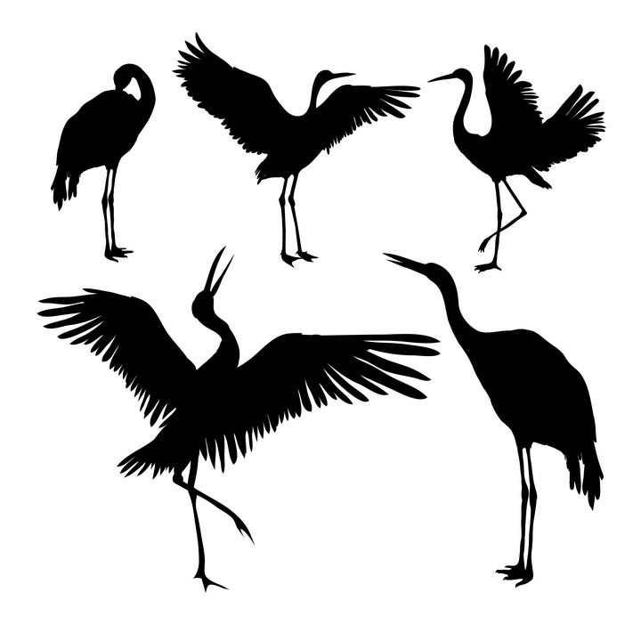 5款仙鹤野生动物剪影图片免抠矢量素材