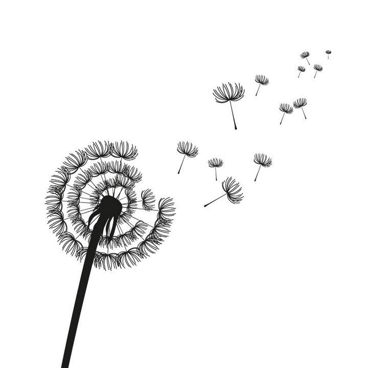 蒲公英绒球飞散剪影图案图片免抠矢量素材 生物自然-第1张