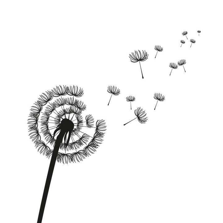 蒲公英绒球飞散剪影图案图片免抠矢量素材