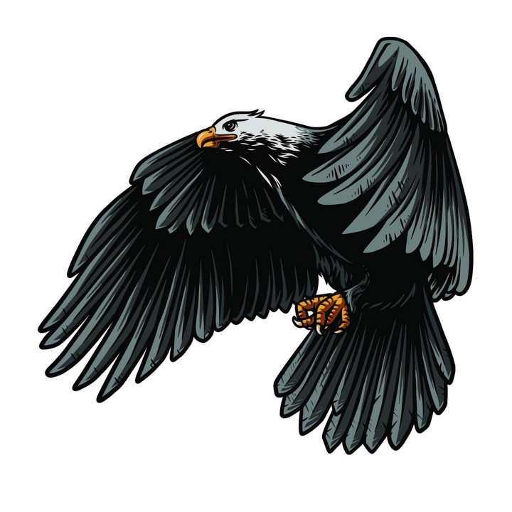 漫画风格飞行的老鹰雄鹰展翅图片免抠矢量素材