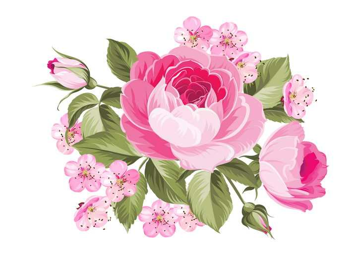 彩绘风格雍容华贵的牡丹花花卉图片免抠矢量图素材