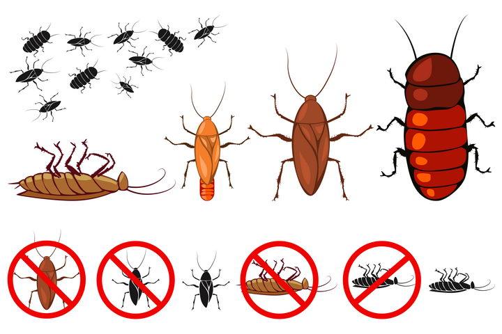 各种蟑螂灭虫消灭害虫防虫标志图标图片免抠矢量素材 生物自然-第1张