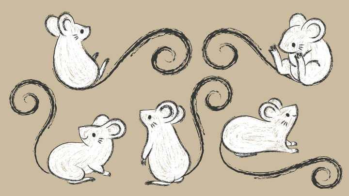 5款手绘风格可爱的卡通老鼠鼠年图片免抠矢量图素材