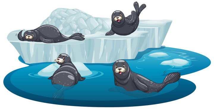 冰山浮冰上的卡通海豹自然景观图片免抠矢量素材