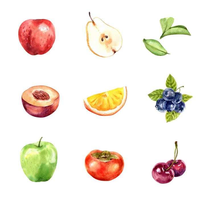 水彩画风格苹果切开的梨桃子橙子蓝莓柿子车厘子等美味水果图片免抠矢量素材
