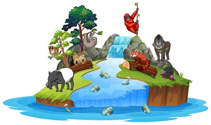 小岛上的瀑布树林和大猩猩小熊猫等野生动物自然景观图片免抠矢量素材