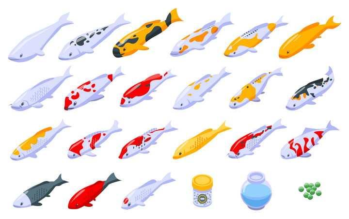 24款各种不同花纹的卡通锦鲤和养鱼用品图片免抠矢量图素材